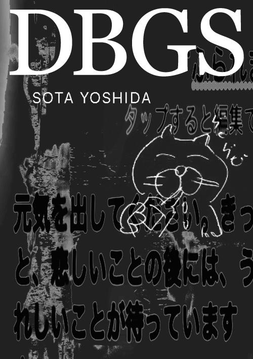 dbgs_fly_b
